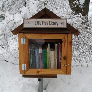 litetbibliotek