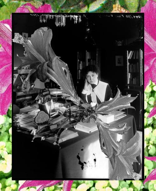 Svartvit bild på Valfrid Palmgren sittandes i ett litet bibliotek. Färgrika och svartvita illustrationer är inkliptta på bilden så att det blir som ett kollage.