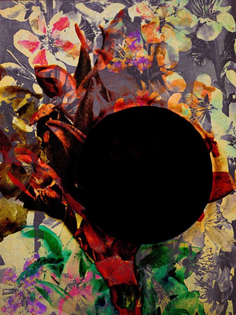 Kollage av blommor och ett svart hål.
